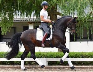 Borja Carrascosa Martinez und TimeWaver Horse Edition